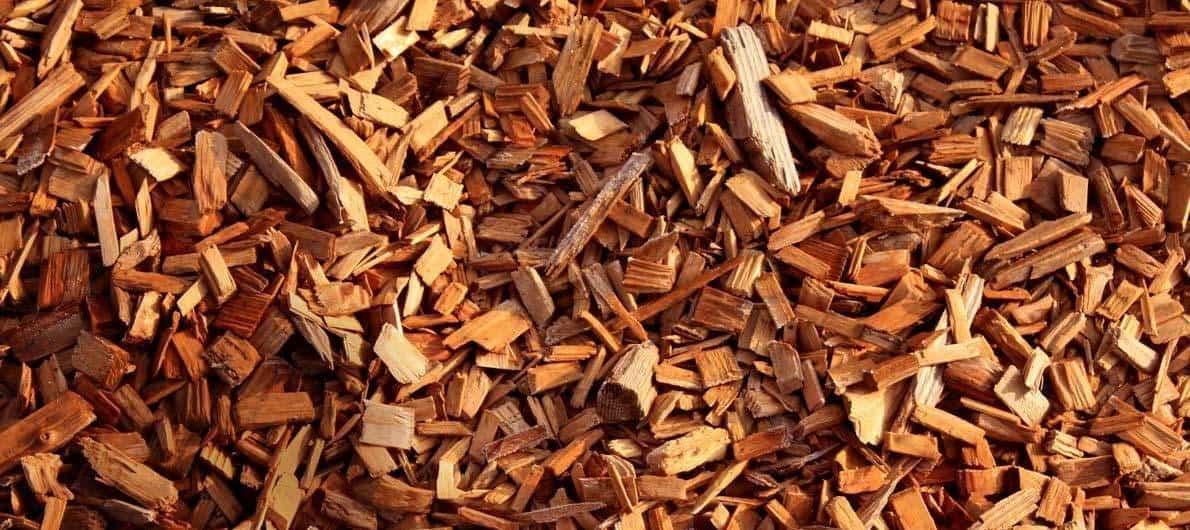 Abrir chakras Aceite esencial de palo de eucalipto