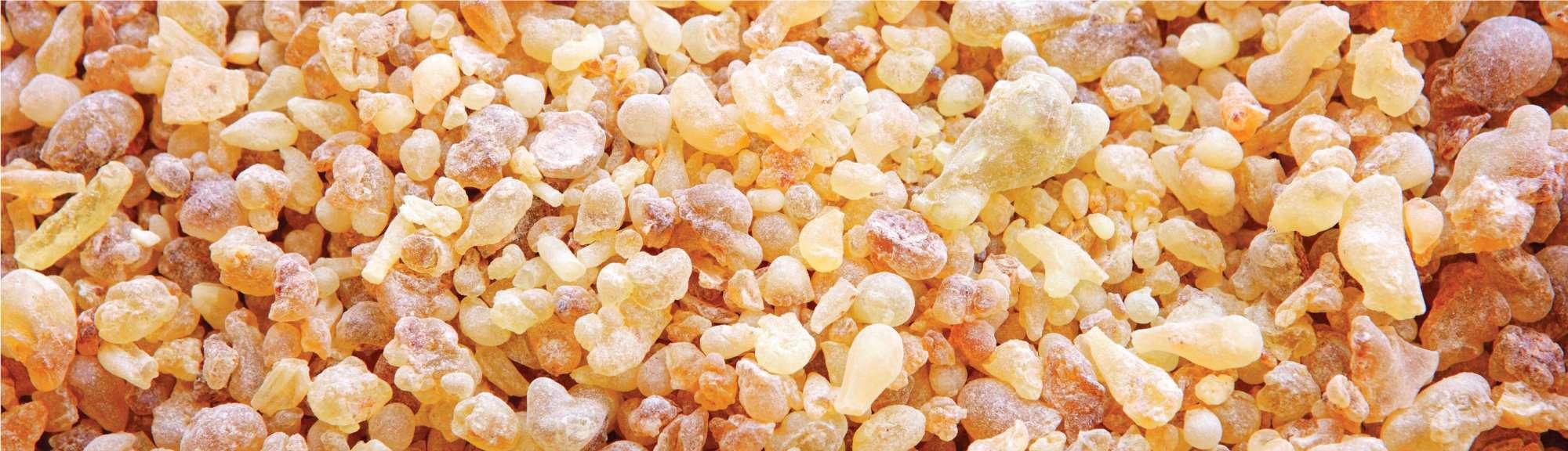 Abrir chakras Aceite esencial de palo de sándalo