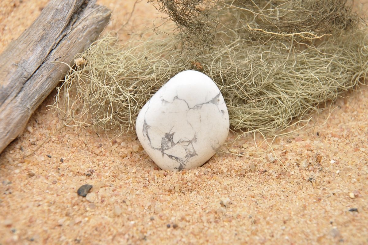 Howlita en la playa